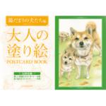 Product postcard dog