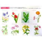 Postcard Spring 02